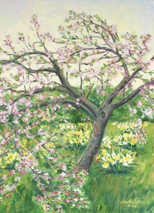 AC1 Apple Tree Art Card by Martha Sperry