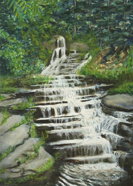 AC5 The Falls Greeting Card by Martha Sperry