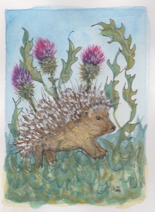 GE20 Hedgehog Greeting Card by Martha Sperry