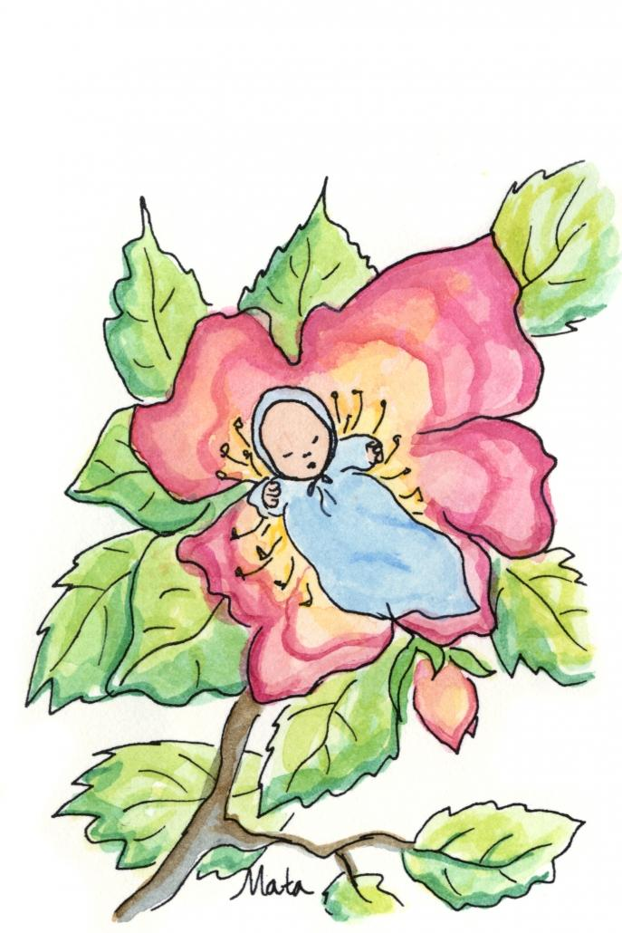 GE15 Flower Baby Gift Enclosure by Martha Sperry