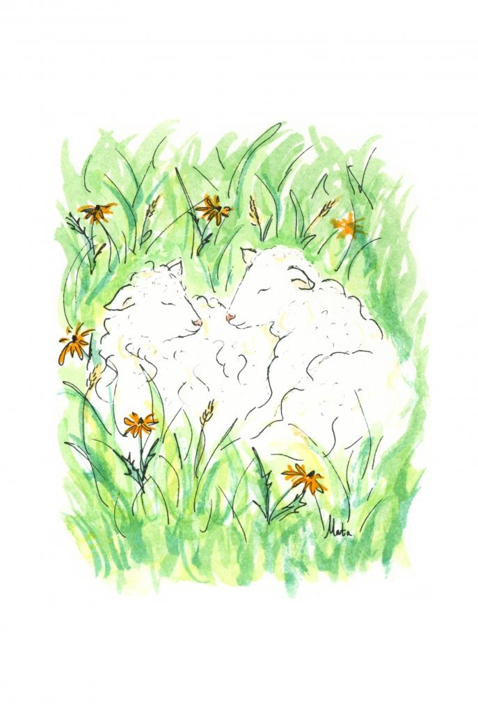 GE16 Sheep in Field Gift Enclosure by Martha Sperry