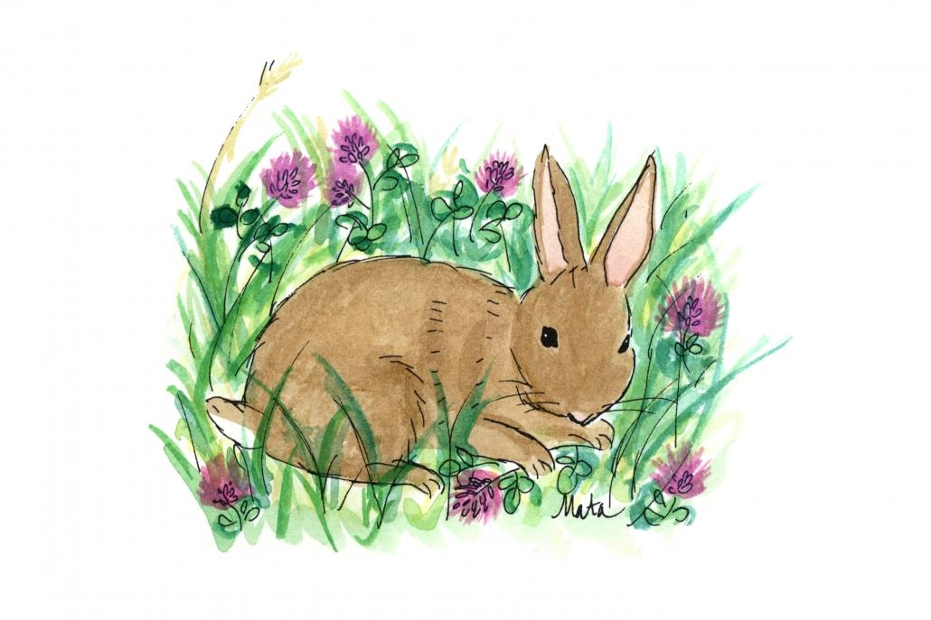 GE4 Rabbit in Clover Gift Enclosure by Martha Sperry